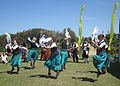 Sark Folk Festival 2011 11.jpg