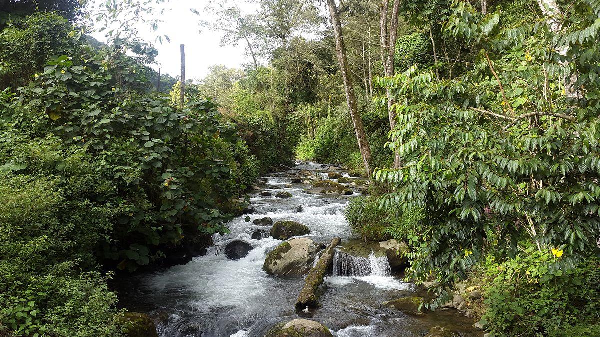 Resultado de imagen para río Savegre