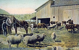 Scene near Cambridge, VT.jpg