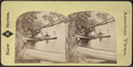 Scene on Lake George, from Robert N. Dennis collection of stereoscopic views.png