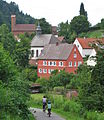Schönau Pfalz (20).jpg
