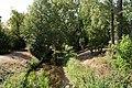 Schlossgarten Zerbst 20180812 001.jpg