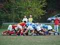 Scrum Lujan Rugby Club.jpg