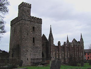 Wexford - Ruins of Selskar Abbey, Wexford.