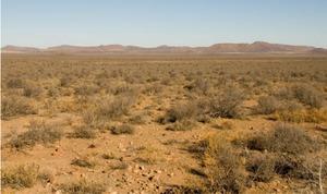 Sengi-пейзаж Нам Karoo.tif