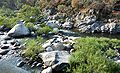 Sequoia National Park - Kaweah River from Pumpkin Hollow Bridge.JPG