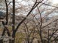 Shinkomachi Tanokuchi, Nagano, Nagano Prefecture 381-2353, Japan - panoramio (2).jpg