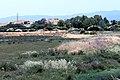Shoreline Park Mountain View California Salt marsh IMG 2358.jpg