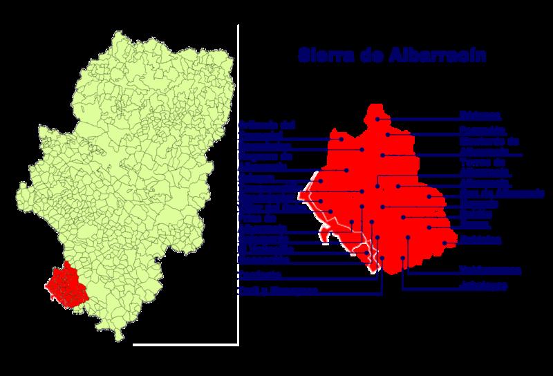 Moscardón en la Sierra de Albarracín