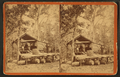Silver Springs Run, Fla. Agnew's Turpentine Establishment. The Still, from Robert N. Dennis collection of stereoscopic views.png
