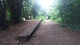 Site of Compton Halt, only the platform remains..jpg