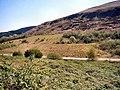 Site of old Pwllyrhebog Railway Line - geograph.org.uk - 406698.jpg