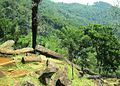 Situs Megalitikum Gunung Padang, Cianjur - panoramio (8).jpg