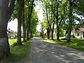 Smilkov, parkway.jpg