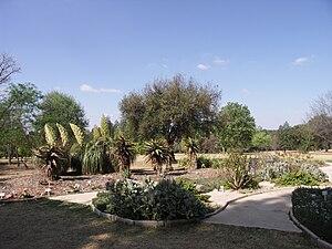 Johannesburg Botanical Garden - Portion of the Succulent Garden