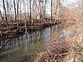 South Hadley Canal - Hadley Falls Canal Park - DSC04454.JPG