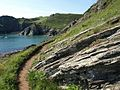 South West Coast Path at Signalhouse Point - geograph.org.uk - 845574.jpg