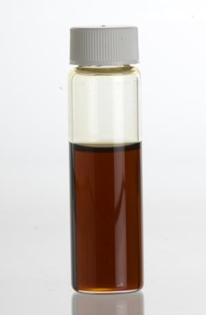 Spikenard - Spikenard (Nardostachys jatamansi) essential oil in a clear glass vial