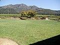 St. Francis Winery and Vineyard, Santa Rosa, California, USA (6259354276).jpg