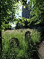 St David's churchyard, Exeter - geograph.org.uk - 847780.jpg