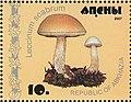 Stamp of Abkhazia - 2007 - Colnect 1008496 - Leccinum scabrum.jpeg