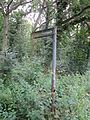 Stanney Woods Ellesmere Port, (1).JPG