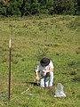 Starr-120418-4698-Senecio madagascariensis-Paul getting soil core samples-Kahakapao Rd-Maui (25113169156).jpg