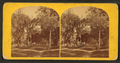 State Street, from Congress St, from Robert N. Dennis collection of stereoscopic views.png
