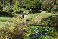 Stephenson-Campbell House spring house and pond.jpg