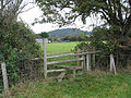 Stile by Offa's Dyke Path - geograph.org.uk - 584834.jpg