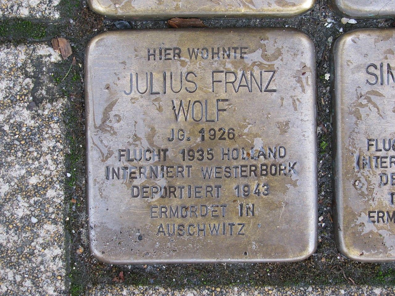 Stolperstein Julius Franz Wolf, 1, Werner-Senger-Straße 19, Limburg an der Lahn, Landkreis Limburg-Weilburg.jpg