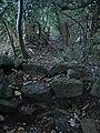 Stone stile and path - geograph.org.uk - 275221.jpg