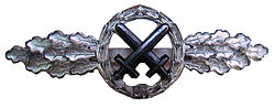 Strike fighter clasp luftwaffe.jpg