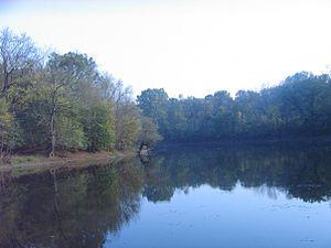 Studva - River Studva along Soljanka forest.