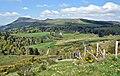 Sur le versant sud de la route menant au-col-de-la-Croix-Morand-dpt-Puy-de-Dome-DSC 1820.jpg
