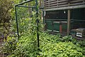 TU Delft Botanical Gardens 12.jpg