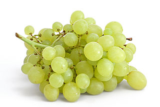 http://upload.wikimedia.org/wikipedia/commons/thumb/b/bb/Table_grapes_on_white.jpg/320px-Table_grapes_on_white.jpg
