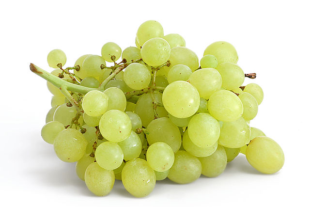 [Image: 640px-Table_grapes_on_white.jpg]
