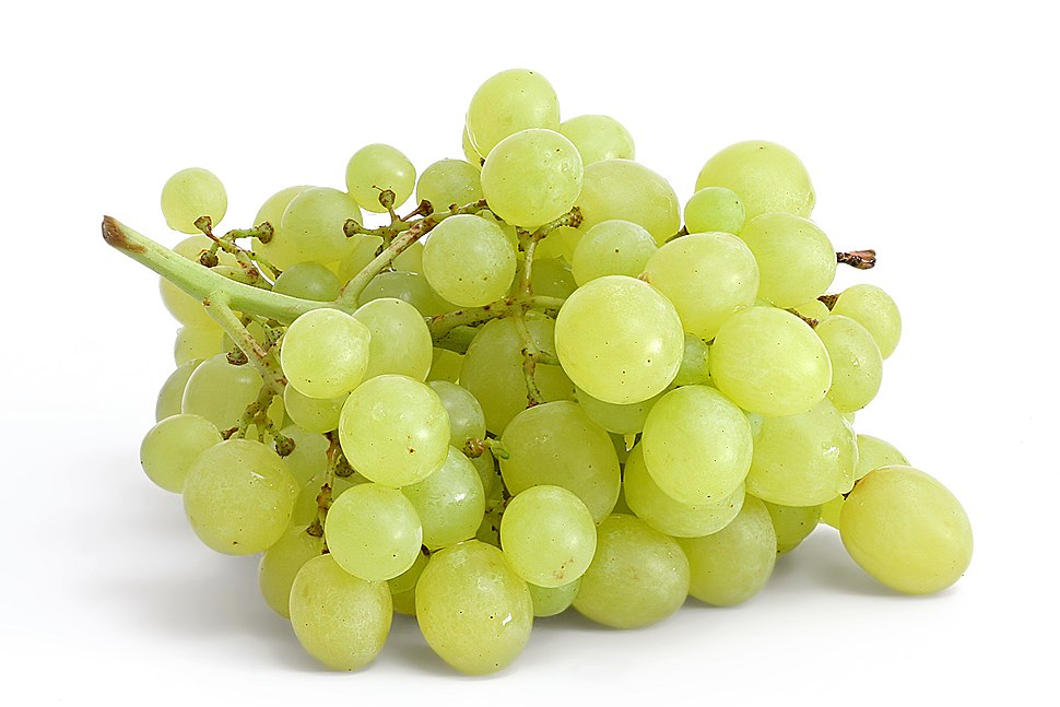 Table grapes on white