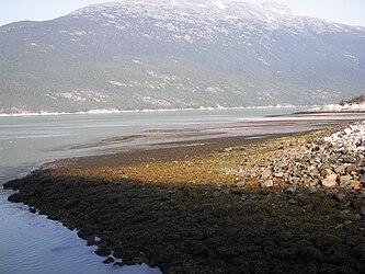 Taiya Inlet from Skagway, Alaska 2.jpg