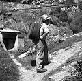 """Tako so nosili v """"lempi"""" na košnji vodo za hišo. Imajo še posebne novejše brente. Šentviška Gora 1954.jpg"""