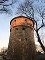 Tallinn - -i---i- (32463843065).jpg