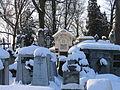 Tarnow stary cmentarz kolb3693.JPG