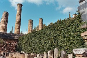 Temple of Apollo at Delphi from below with ivy