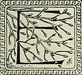 The American Museum journal (c1900-(1918)) (18160696071).jpg