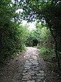 The Anglesey Coastal Path near Trwyn-du ^2 - geograph.org.uk - 489769.jpg