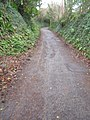 The Old Beer Road - geograph.org.uk - 771460.jpg