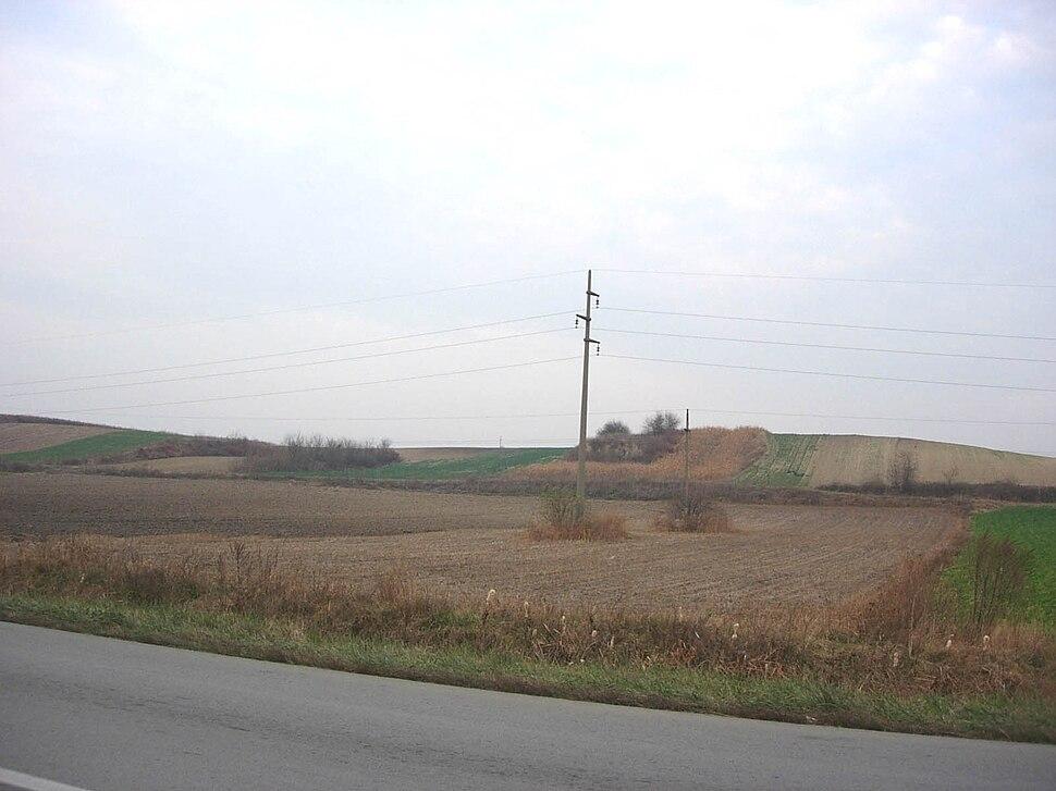 The Telečka downs near Sivac