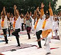 The Union Minister for Tribal Affairs, Shri Jual Oram participates in the Mass Yoga demonstration, on the 4th International Day of Yoga 2018, in Rourkela, Odisha on June 21, 2018 (1).JPG