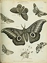 The cyclopaedia; or, Universal dictionary of arts, sciences, and literature. Plates (1820) (20821763805).jpg